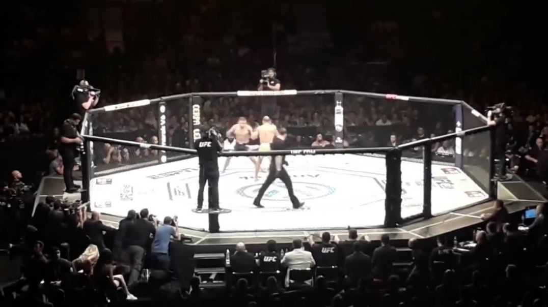 Luta do Jose Aldo UFC 237 11 05 2019